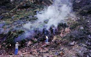 Fumaroles at el Ceboruco volcano